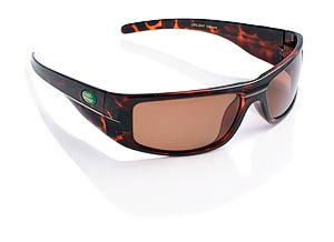 Special Offer £19.99 Oakland Brown Sunglasses